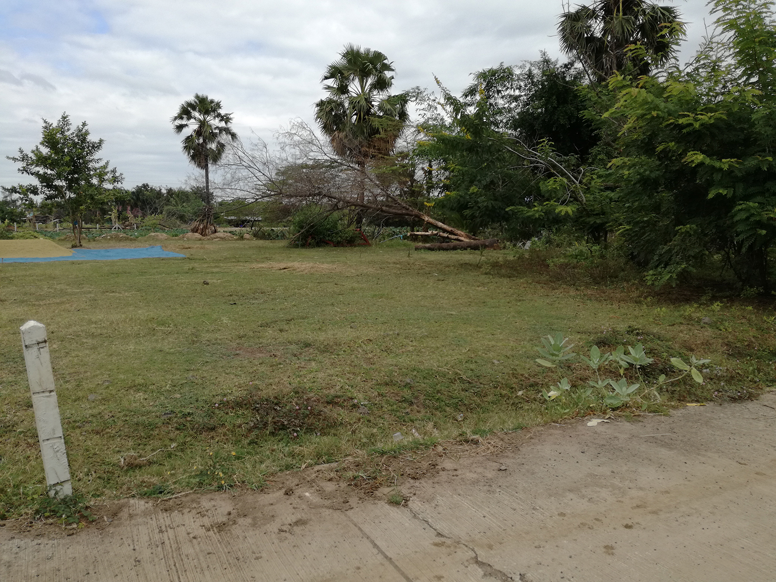 A Small Parcel Land near Buriram Centre