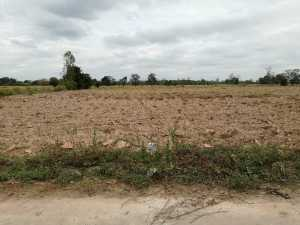 A Parcel of 23 Rai Agricultural Land in Buriram at Buriram for 5.75 Million Baht