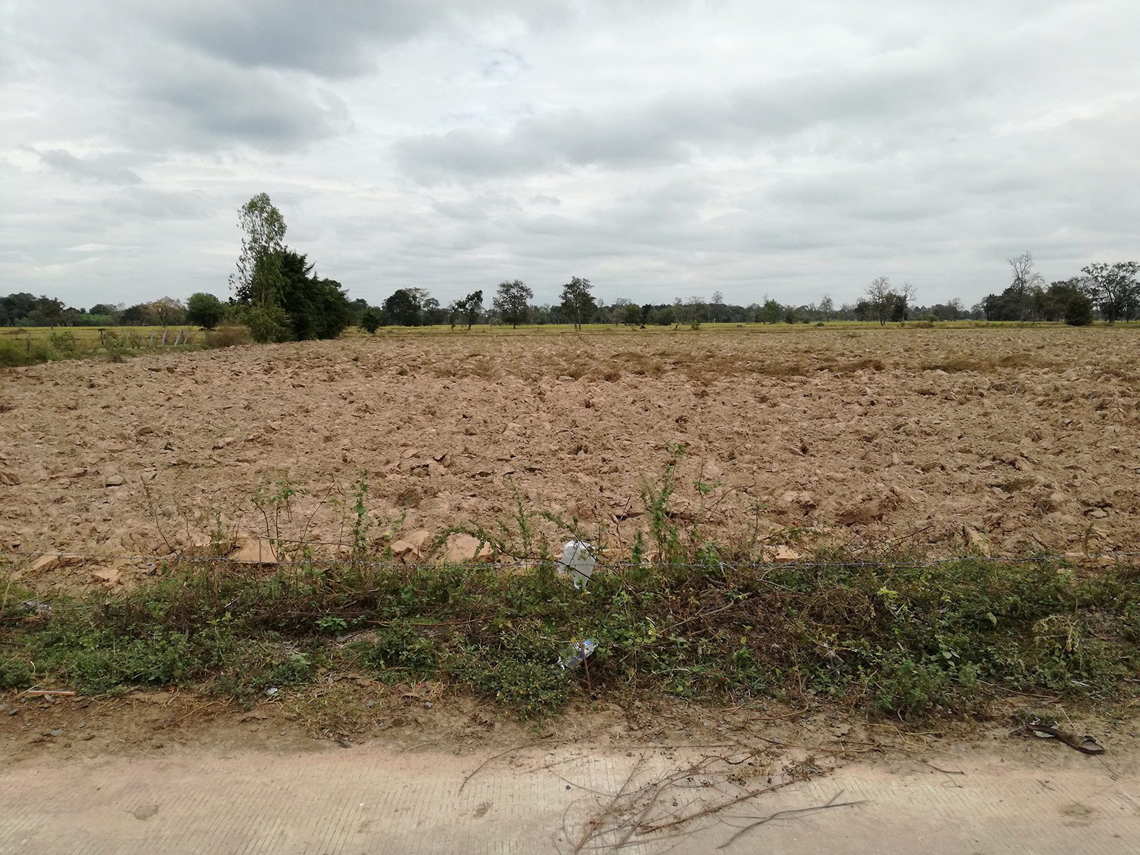 A Parcel of 23 Rai Agricultural Land in Buriram