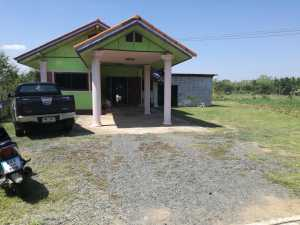 A Detached 3 Bedroom Bungalow on 2 Rai